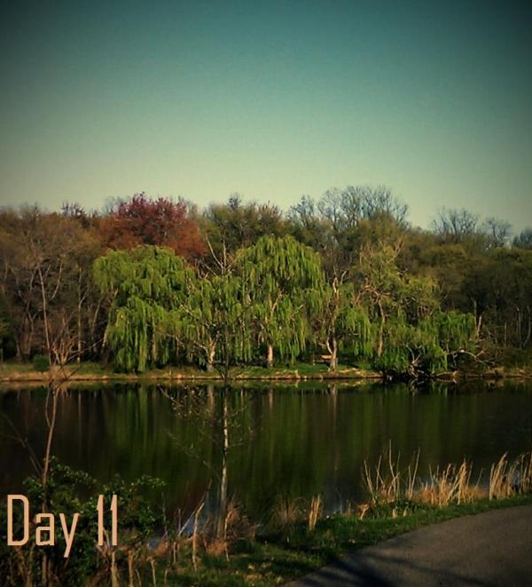 #30daysofbiking day 11